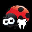 Beruška - Zubní lékař
